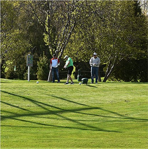 Group of People Golfing